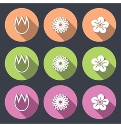 Flower icon set tulip camomile daisy orchid vector