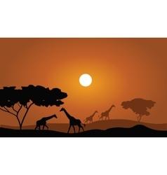 Giraffe silhouette savanna landscape vector