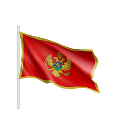National flag of montenegro country vector