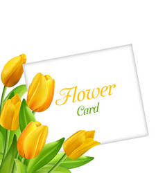 nature flower card with tulips invitation for vector image