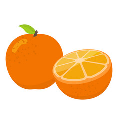 oranges cartoon vector image vector image