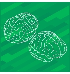 Outline human brain vector