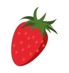 strawberry healthy fruit nature vector image