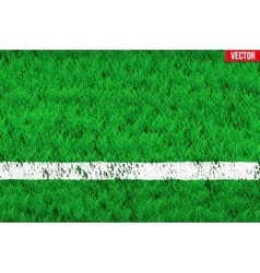 White line on Sport grass field vector image