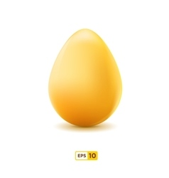 Close Up Of Egg Isolated On White Background vector image
