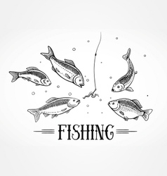 fly fishing design element vector image