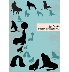 silhouettes of seals vector image