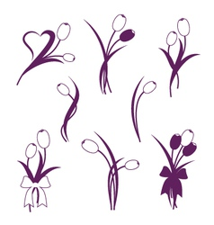 Tulip design elements vector image