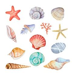 Watercolor set of seashells vector