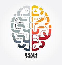 Infographics brain design diagram point style vector