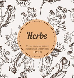 Seamless Herb Background vector image vector image