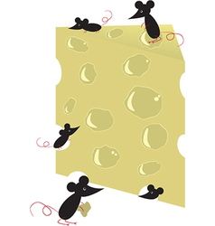 Mouses and cheese vector