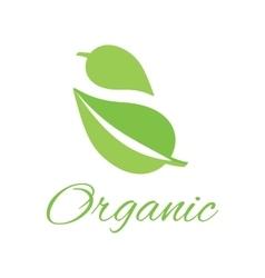 Organic logo green leaf design flat vector