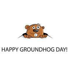 Groundhog peeking out of a hole vector