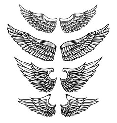 Set of the wings isolated on white background vector