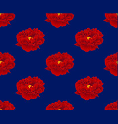 red peony on navy blue background vector image vector image