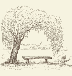 wooden bench under a willow tree by the lake vector image