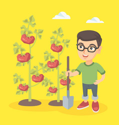 Little caucasian farmer boy cultivating tomatoes vector