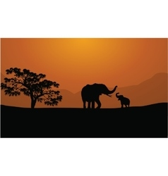 Silhouettes of elephants on mountain backgrounds vector image