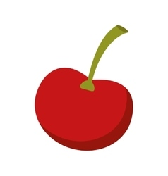 Ripe cherry fruit nature design vector