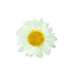 Polygon chamomile bud on a white background vector