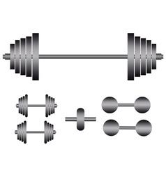 Barbells and dumbbells vector
