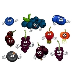 Black currant blueberry and briar fruits vector