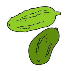 two green cucumbers vector image vector image