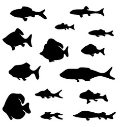 Black fish silhouettes isolated on white vector