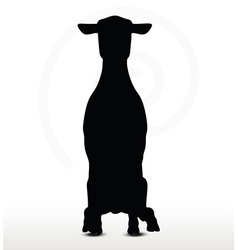 sheep silhouette with sitting pose vector image