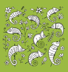 Chameleon collection sketch for your design vector