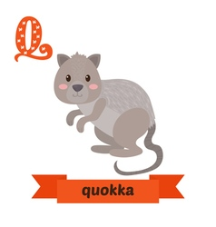 Quokka q letter cute children animal alphabet in vector