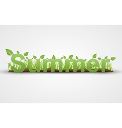 Summer text with green leaves on a white vector image