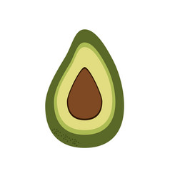 avocado food natural vector image