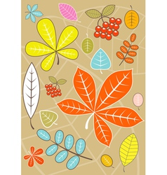 Colored autumn leaves vector image
