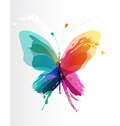 Colorful butterfly created from splash and colored vector image