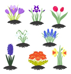 Spring is coming vector image