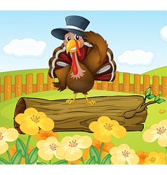 A turkey inside the fence vector
