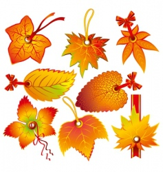 Autumn label vector