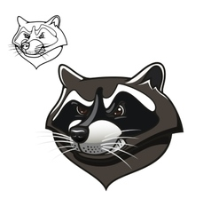 Angry cartoon raccoon mascot on white vector