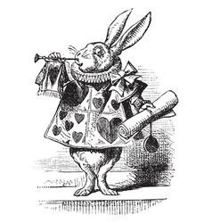 Alice in wonderland vintage vector