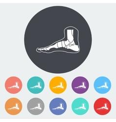 Foot anatomy icon vector image vector image