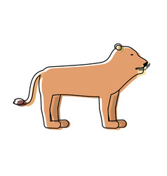 Safari animals design vector