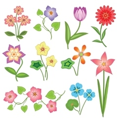 Spring flower icon set tulip chamomile daisy vector