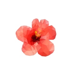 Polygon red hibiscus bud on a white background vector