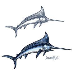 marlin fish isolated sketch icon vector image vector image