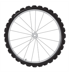 Wheel of the bicycle vector