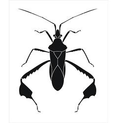 Life bug vector