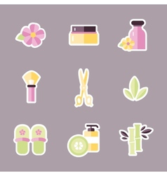 Collection of icons representing wellness vector
