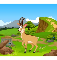 Funny chamois cartoon in the jungle vector